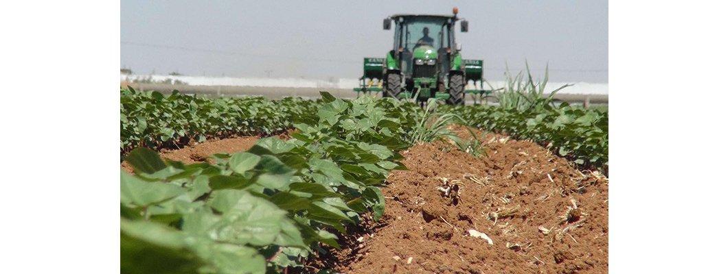Bitkisel üretimin vazgeçilmez girdisi; Gübre | Rivasol