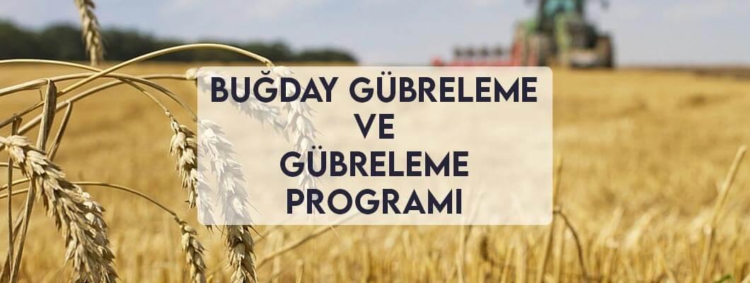 Buğday Gübreleme ve Gübreleme Programı