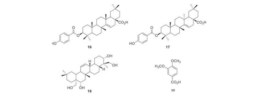 Doğal Solucan Gübresinin Çoklu Element Yapısının Farkı | Rivasol