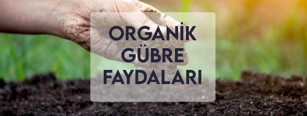 Organik Gübre Faydaları
