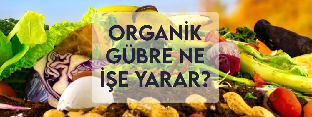 Organik Gübre Ne İşe Yarar?