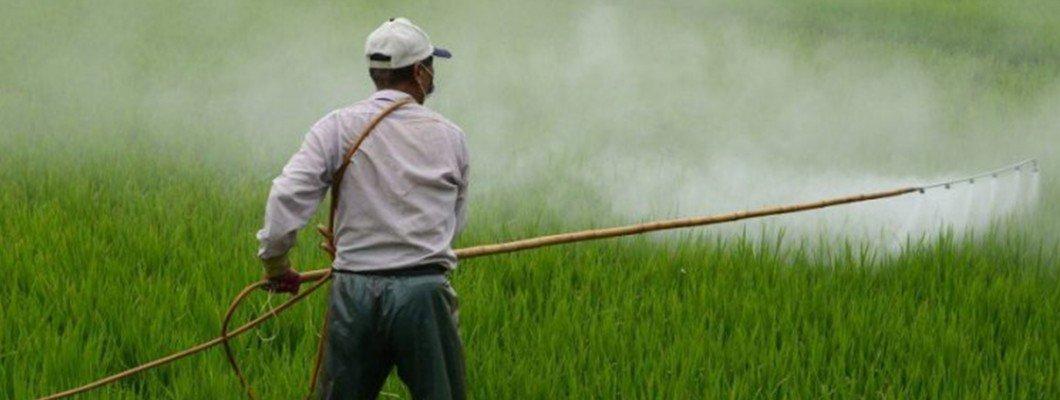 Tarımda Kullanılan Pestisitler Öldürüyor | Rivasol