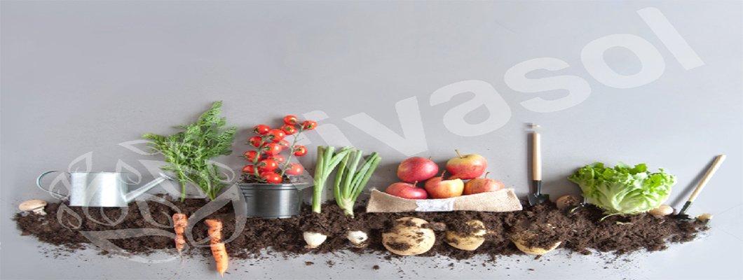 Vermikompost Ürünlerinin Bitki Koruma Amaçlı Kullanımı | Rivasol