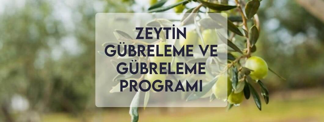 Zeytin Gübreleme ve Gübreleme Programı