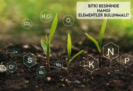 Bitki Besininde Hangi Elementler Bulunmalı?