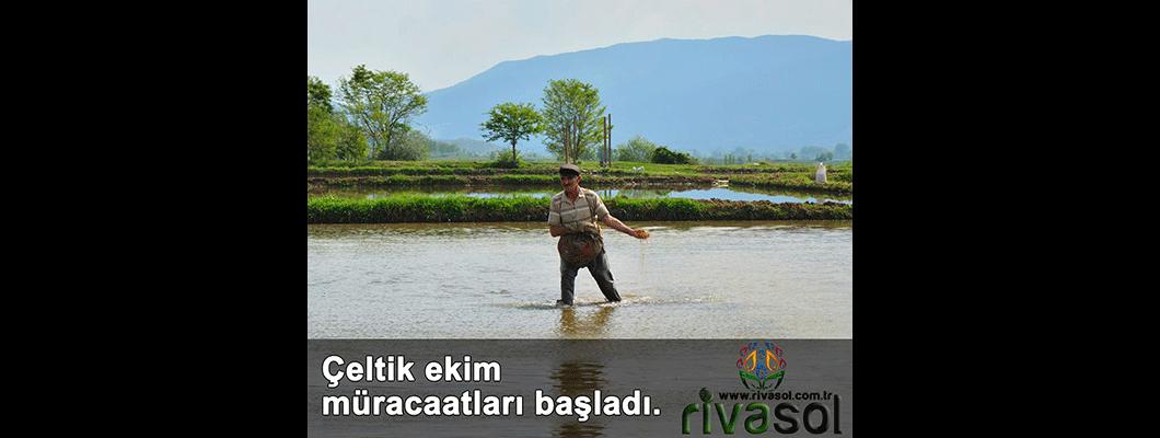 Edirne'de çeltik ekim müracaatları başladı