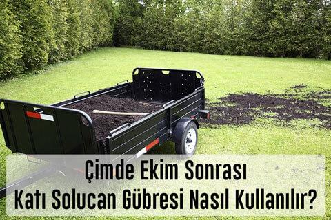 Çimde Katı Solucan Gübresi Nasıl Kullanılır? Gübreleme Zamanları Nedir? Çim Çosturan Gübre