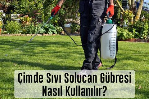 Çimde Sıvı Solucan Gübresi Nasıl Kullanılır? Gübreleme Zamanları Nedir? Çim Çosturan Sıvı Gübre