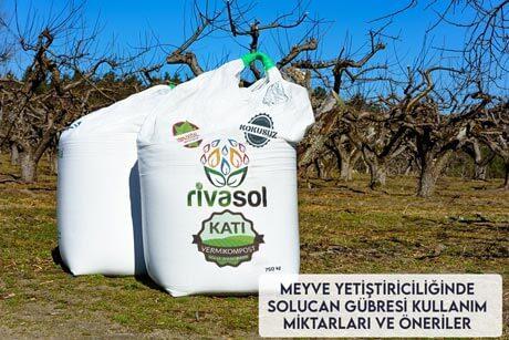 Meyve Yetiştiriciliğinde Solucan Gübresi Kullanım Miktarları ve Öneriler
