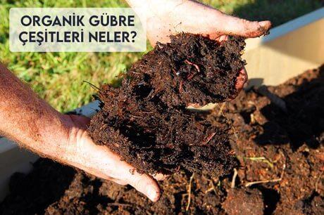 Organik Gübre Çeşitleri Neler?