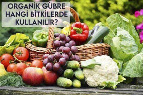 Organik Gübre Hangi Bitkilerde Kullanılır?