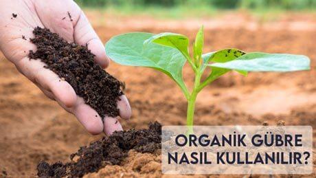 Organik Gübre Nasıl Kullanılır?