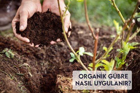 Organik Gübre Nasıl Uygulanır?