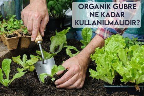 Organik Gübre Ne Kadar Kullanılmalıdır?