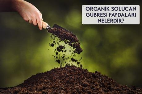 Organik Solucan Gübresi Faydaları Nelerdir?