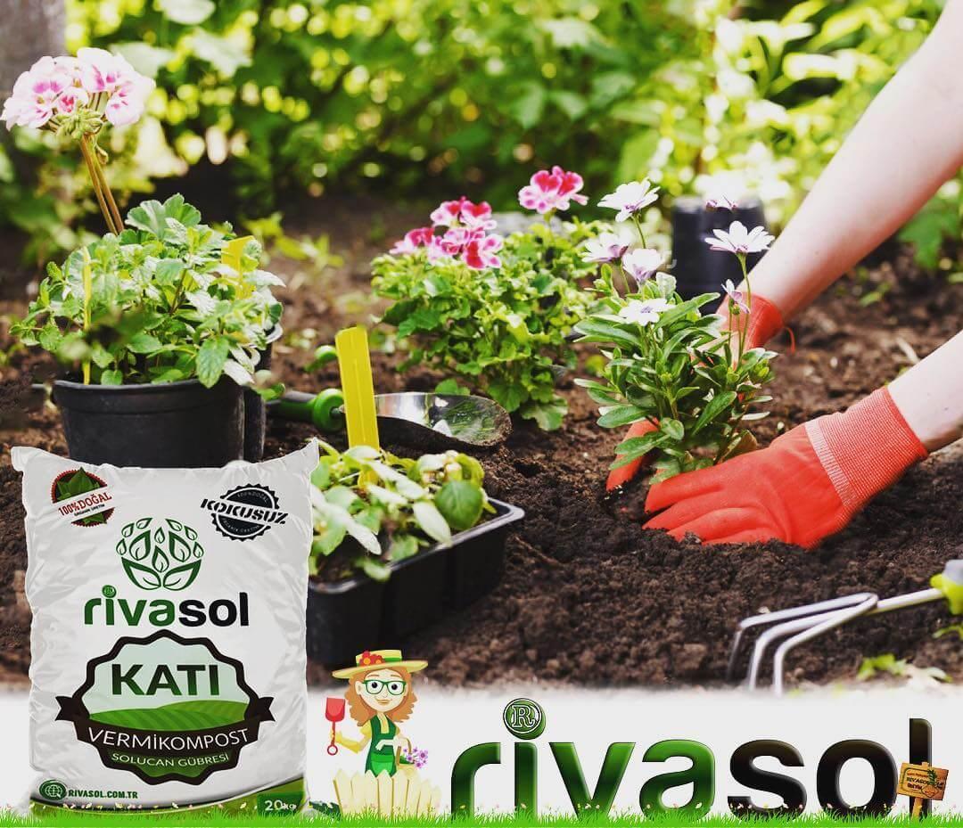 Çeşitli Bitkilerde Rivasol® Organik Solucan Gübresi Nasıl uygulanır