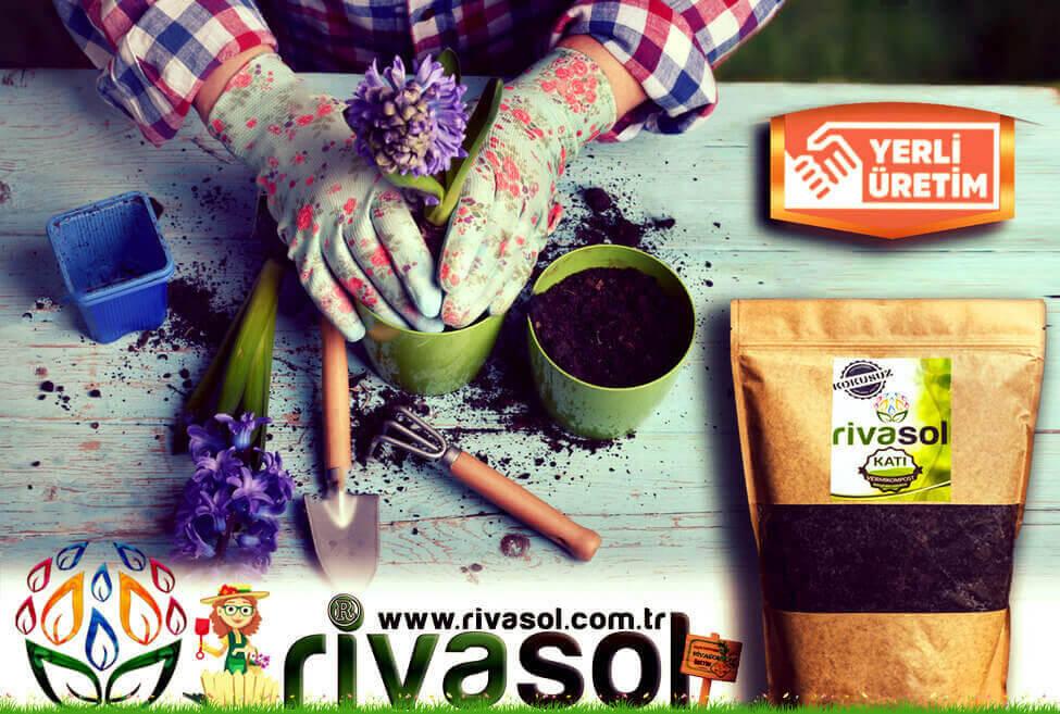 Küçük Bitkiler ve Saksılarda Rivasol® Organik Solucan Gübresi Nasıl uygulanır