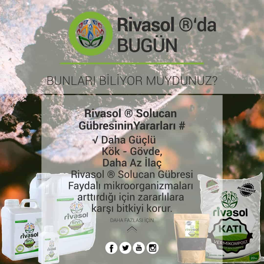 Rivasol® Organik Solucan Gübresinin Bitkiye Etkisi Nedir?