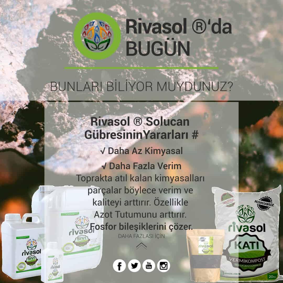 Rivasol® Organik Solucan Gübresinin Verime Etkisi Nedir?
