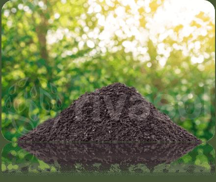 Solucan Gübresi Bitkilere Nasıl kullanılır?